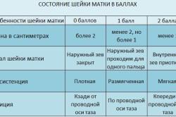 Таблица состояния шейки матки